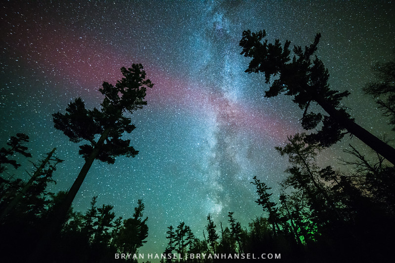 White Pine, Milky Way and Northern Lights