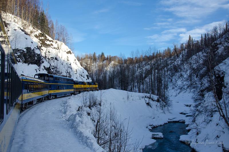 USA-alaska-Alaska Railroad-1739.jpg