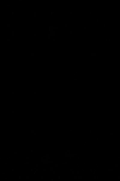 7L8A6672.jpg