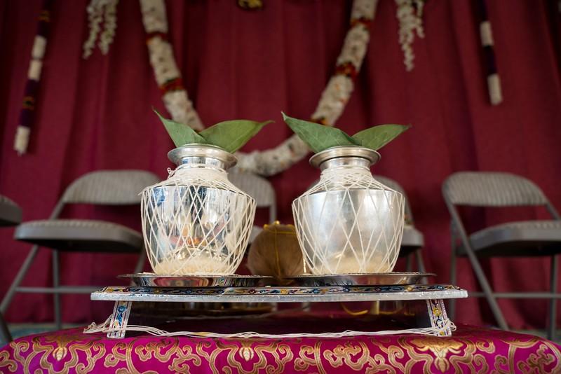 Erin_Harsha_Hindu_Wedding-43.jpg