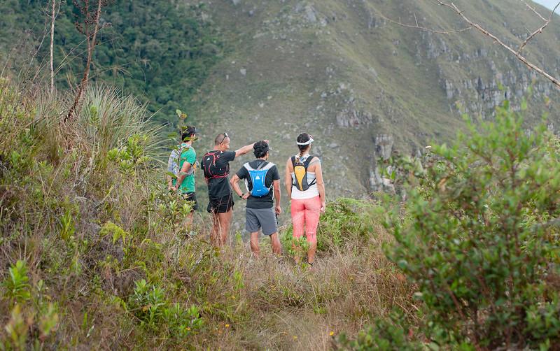 Adidas Runners - Amazonas