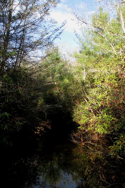 Panthertown Valley Trail - 3,680'