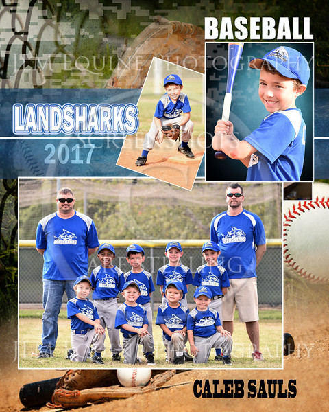 Landsharks  October  2017