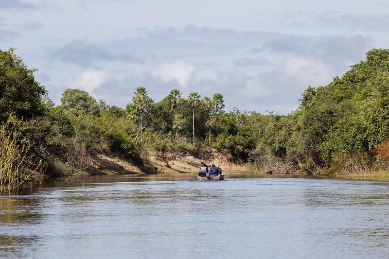 Trip to Brazil itinerary- Pantanal