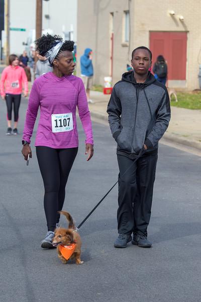 Richmond Spca Dog Jog 2018-477.jpg
