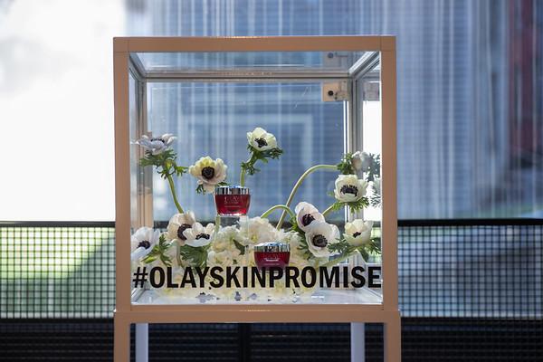 Olay Skin Promise