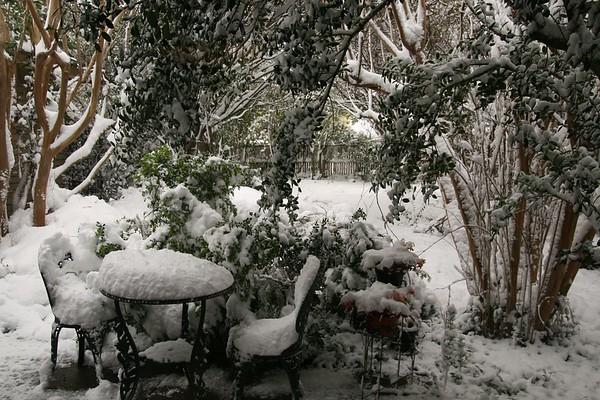 Texas Spring Snow 3-22-10