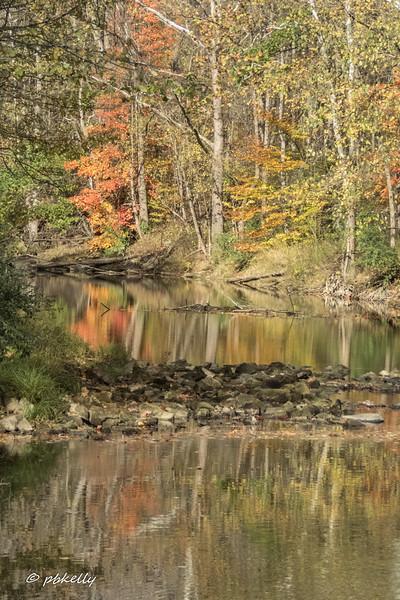 river color 110517-3.jpg