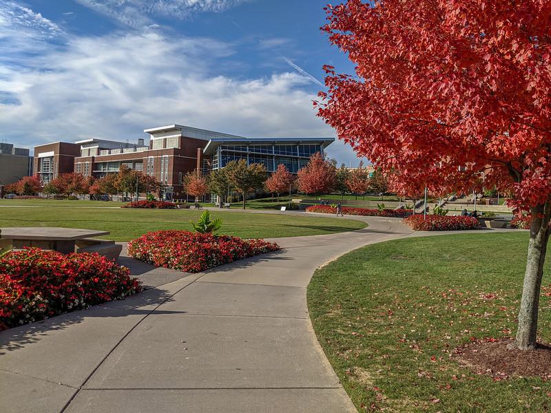UA-campus2.jpg