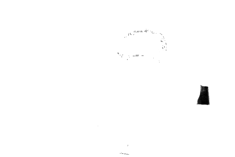 DSC08997.png