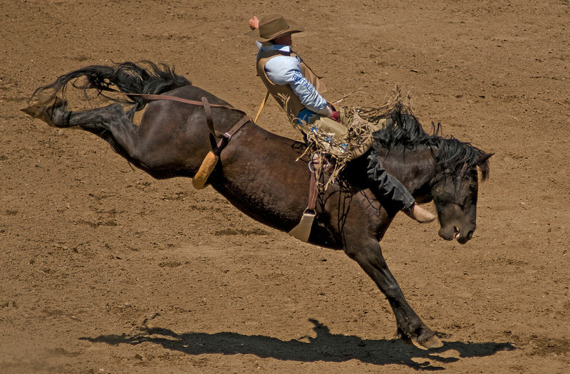 COOMBS RODEO-2009-3593A.jpg