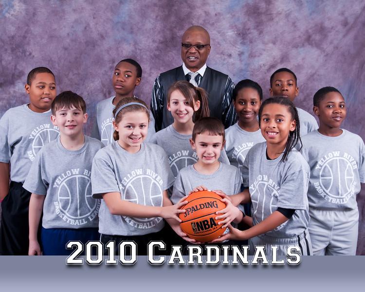 Team-Cardinals-2010_FINAL.jpg
