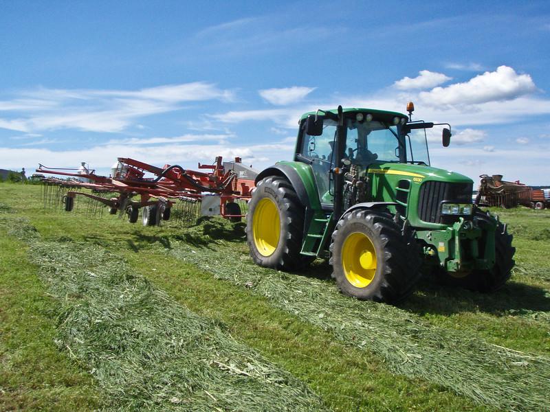 Grashøsting-27