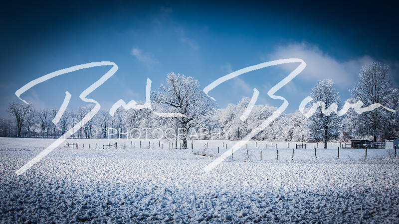 snow-76.jpg