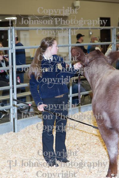 2018 KISD Breeding Beef Showmanship