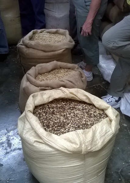 Most of the top quality beans are sent overseas where people are willing to pay top prices while the beans of lesser quality are kept in the country where the people are content with the quality for less of a price.