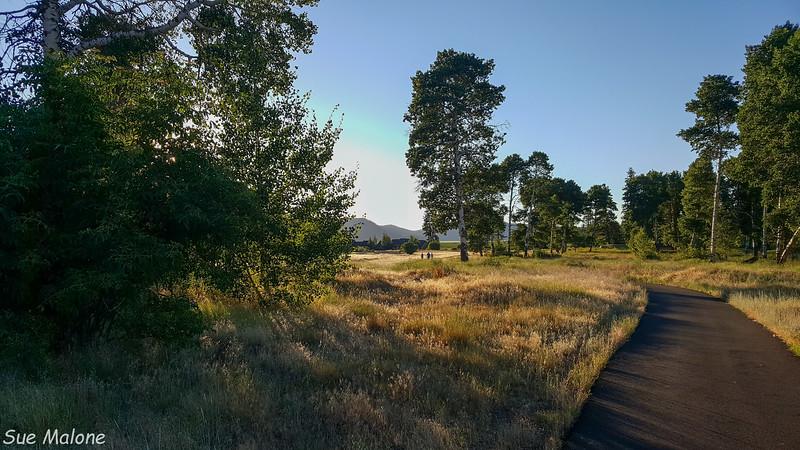 evening walk-5.jpg