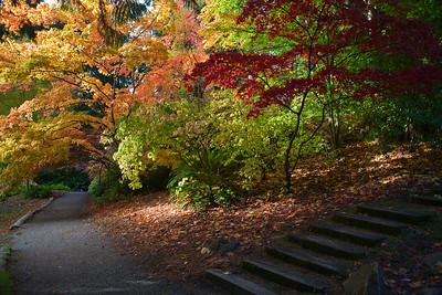 Arboretum 2011