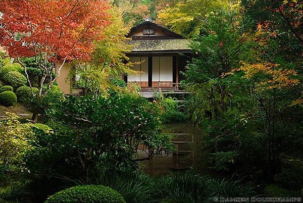 Jakko-in Temple image copyright Damien Douxchamps
