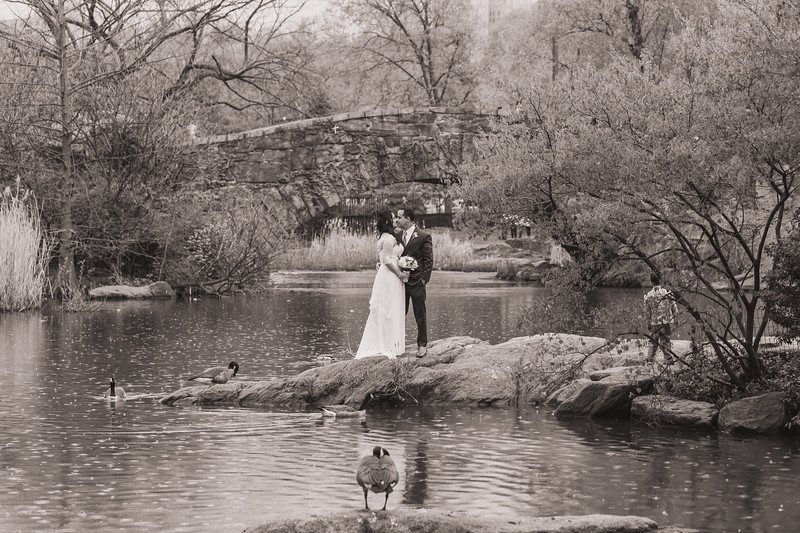 Central Park Wedding - Diana & Allen (250).jpg