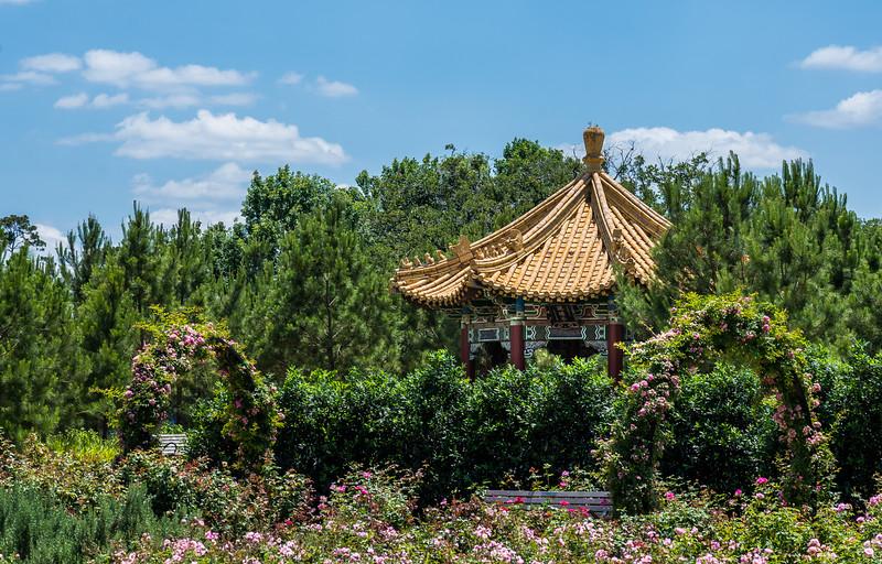 McGovern-Centennial-Gardens-9324-HDR.jpg