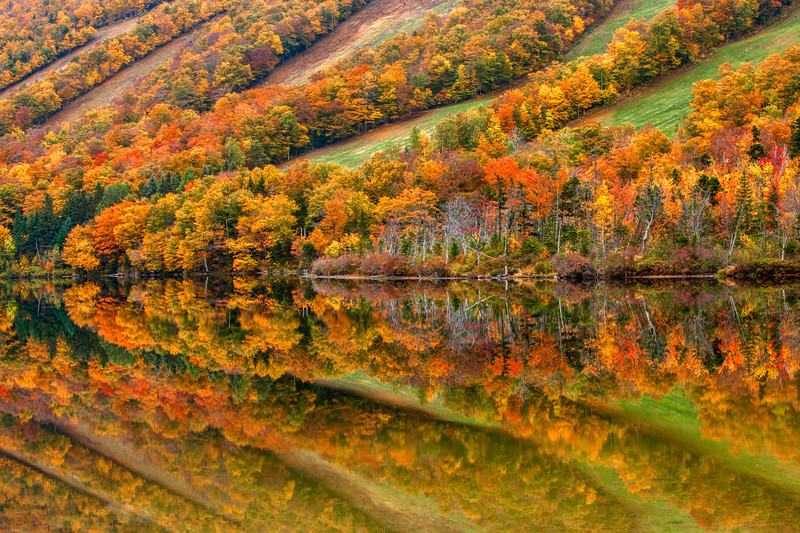 Cannon Mountain Reflections