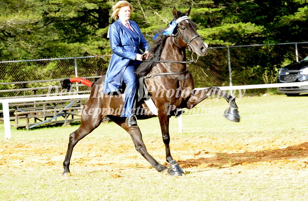 CLASS 23 AMATEUR OWNED & TRAINED SPECIALTY