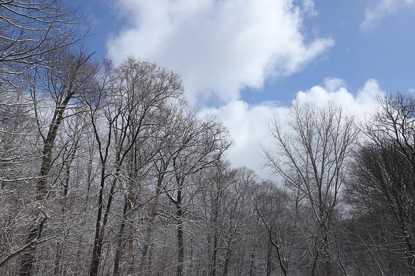 Snowy April - 4/4/18