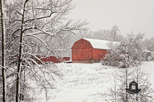 Calvert County Barns - Snow Scenes