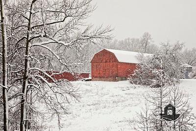 Calvert County Barns - Snow Scenes