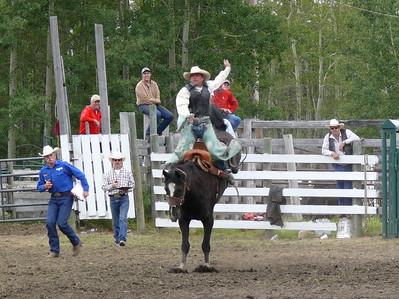 Saddle Bronc Section 1
