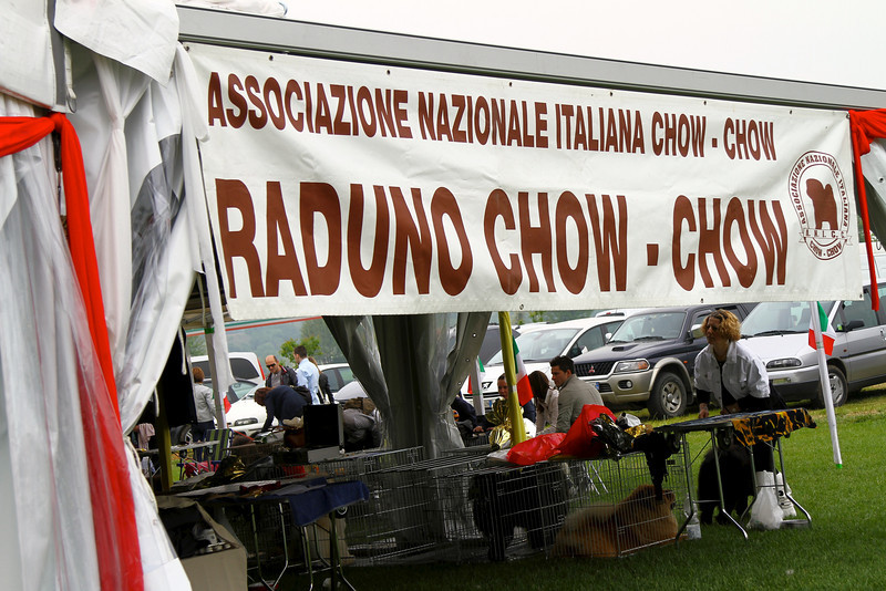 2011 ITALY CHOW NATIONAL   931.jpg
