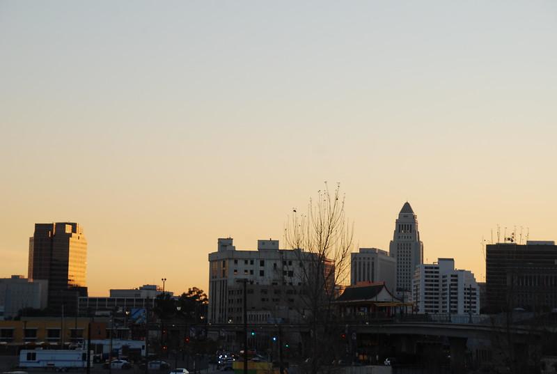 2011-01-26_LASHP_Park_Skyline_124.JPG