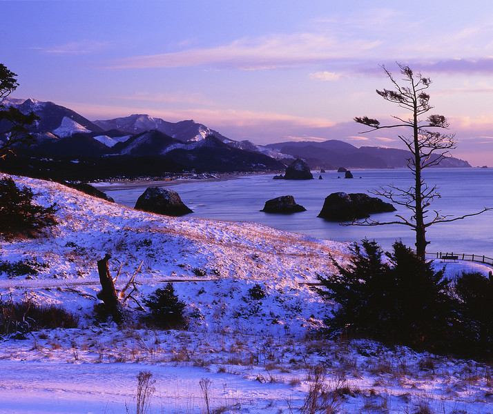 Ecola meadow in snow.jpg