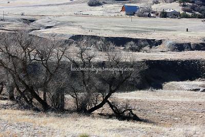 Prairie and Prairie Scenery