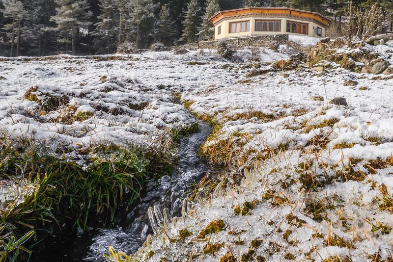 Frozen-frontyard-Phobjika-Bhutan.jpg