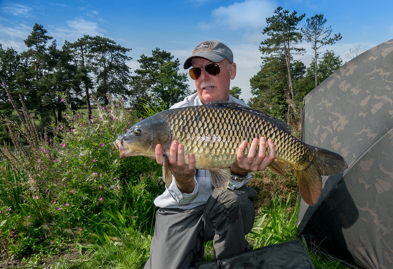 A perfect fly caught common carp