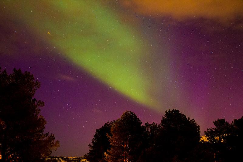 Tromso Lights