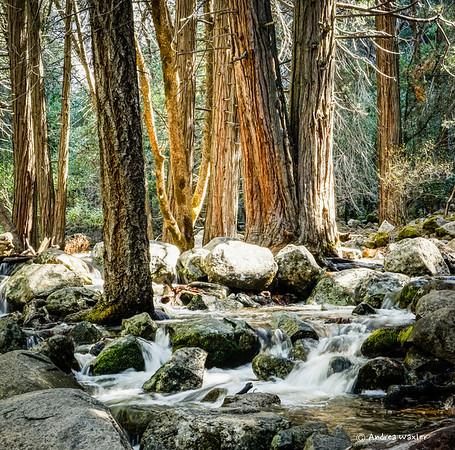 Yosemite Day 3