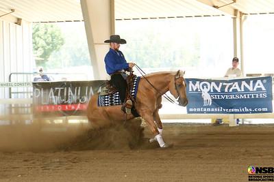 Thursday Novice Horse