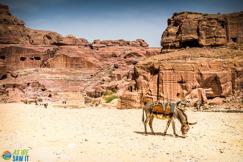 Petra-04898.jpg