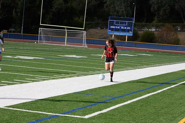 Girls soccer 11-25-2010