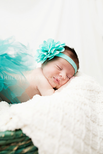 Hillary_Ferguson_Photography_Carlynn_Newborn196.jpg