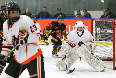 Female Semi-Final - Regina Rebels vs. Prince Albert Northern Bears - Dec 31