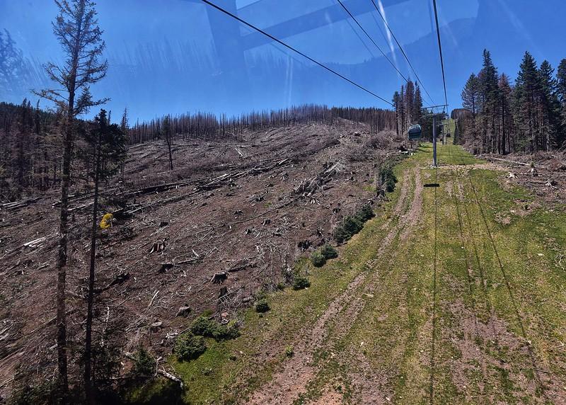 NEA_0467-7x5-Fire Damage from Gondola.jpg