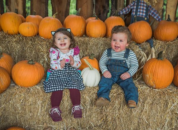 Hutch 2nd Birthday + Ella & Pumpkin Patch