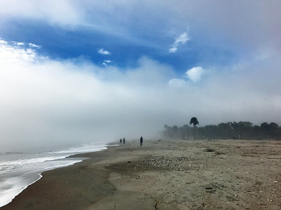 SC, Foggy Morning at Edisto Beach; January 17, 2017