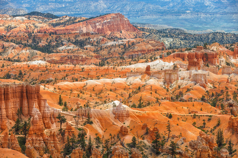 Bryce Canyon National Park. Utah, USA.