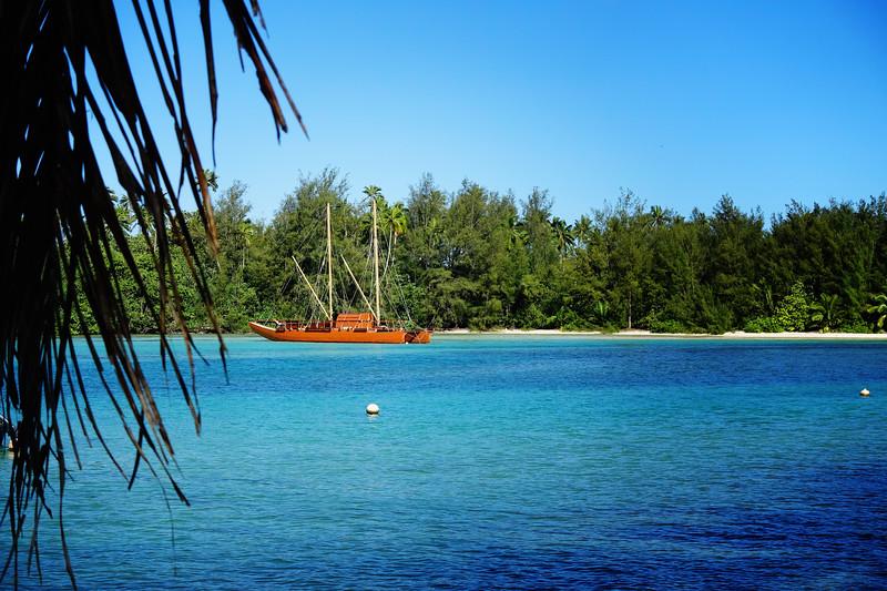 Rarotonga-Cook-Islands-2014-23.jpg