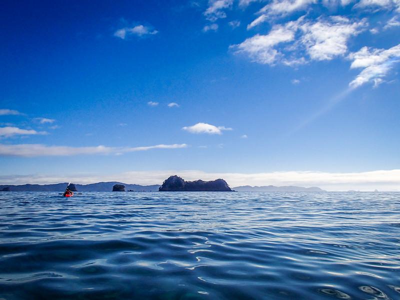 2014-08 New Zealand 0529